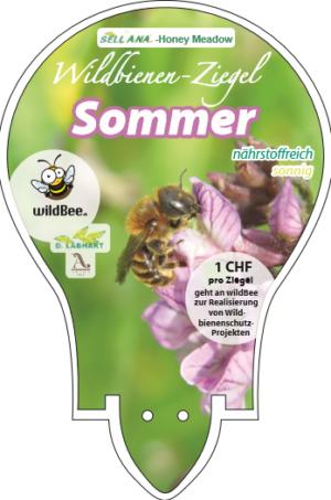 Wildbienen Sommer nährstoffreich